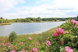 Oldenstädter See im Juni